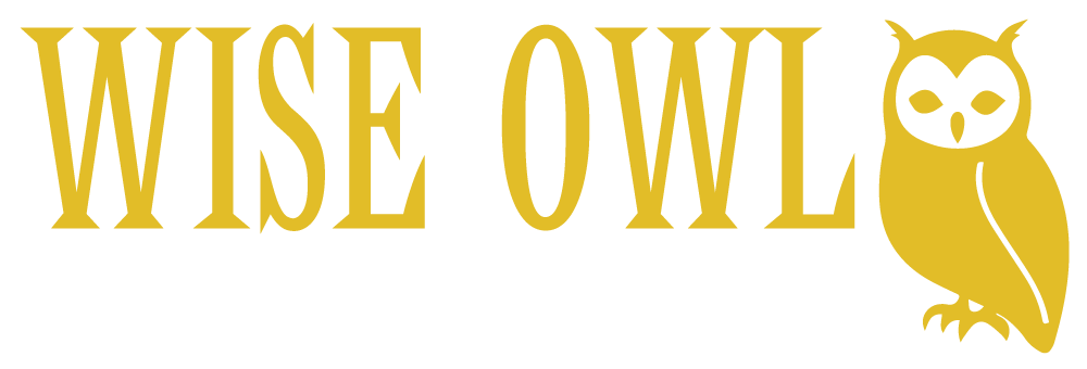 Wise Owl Bird of Prey Rescue